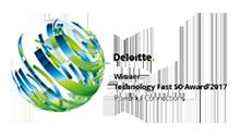 Logo Award Deloitte 2017