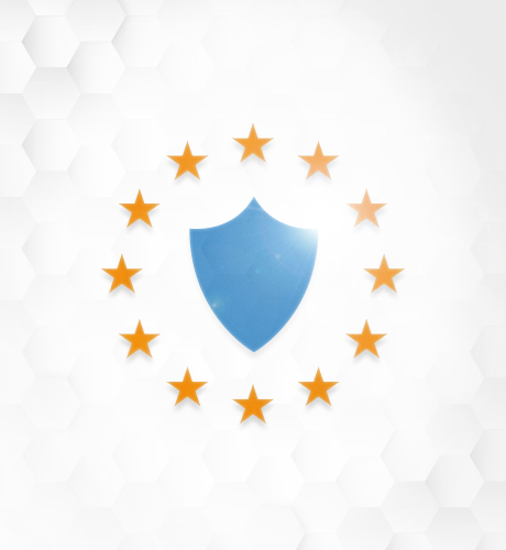 EU security Icon